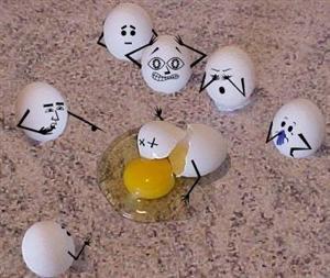 5 - Adams, K. / Egg Drop Challenge